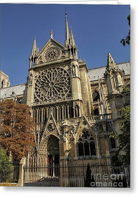 Notre Dame Cathedral  Greeting Card by Patricia Hofmeester