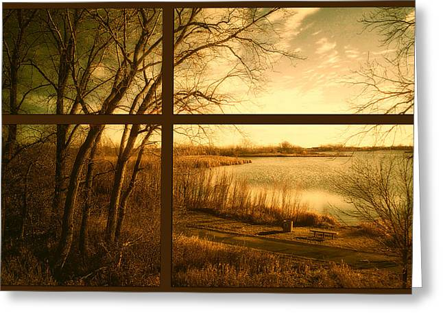 November By The Walking Path Pa Greeting Card by Thomas Woolworth