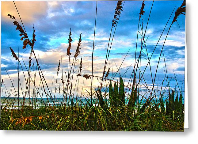 November Day At The Beach In Florida Greeting Card