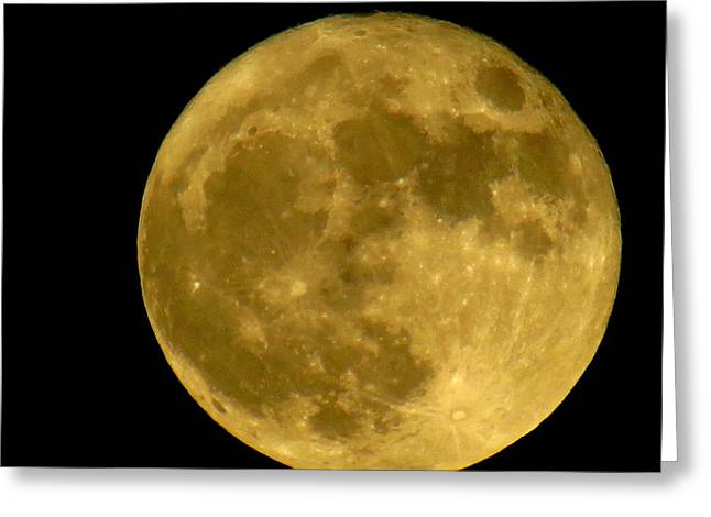 November Full Moon Greeting Card by Eric Switzer