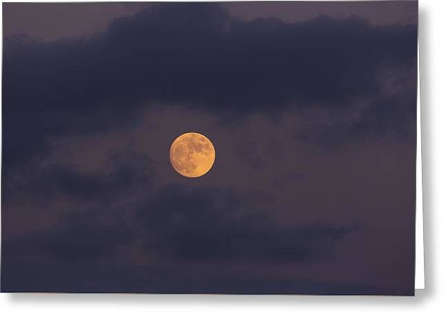 November Full Moon With Plane Greeting Card by Angela A Stanton