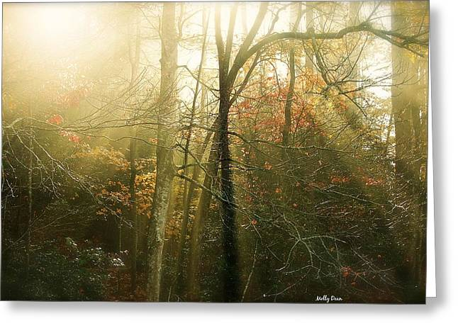 November Light Greeting Card by Molly Dean