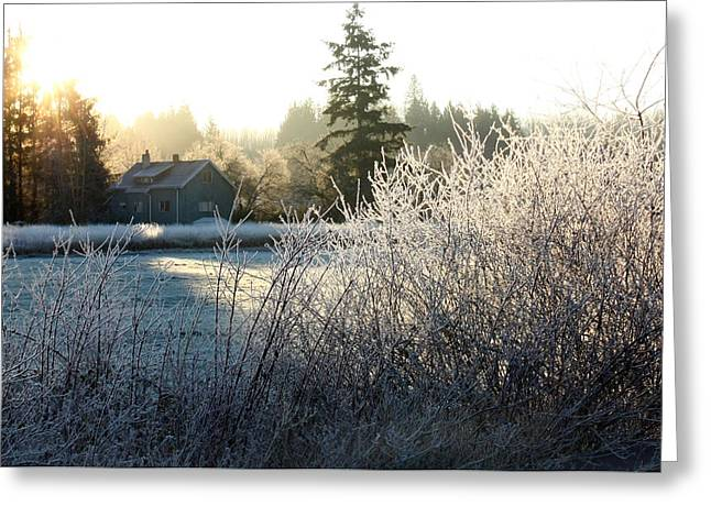 November Morning Greeting Card by Barbara  White