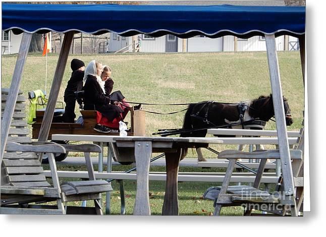 November Pony Cart Fun Greeting Card