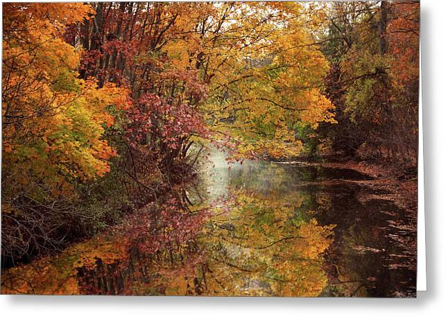 November Reflections Greeting Card by Jessica Jenney