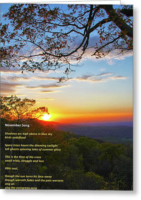 Greeting Card featuring the photograph November Song by Mitch Cat