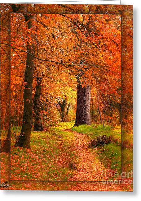 November Wood Greeting Card