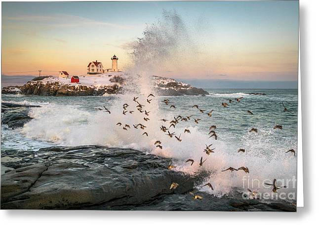 Nubble Wave With Sandpipers Greeting Card by Benjamin Williamson