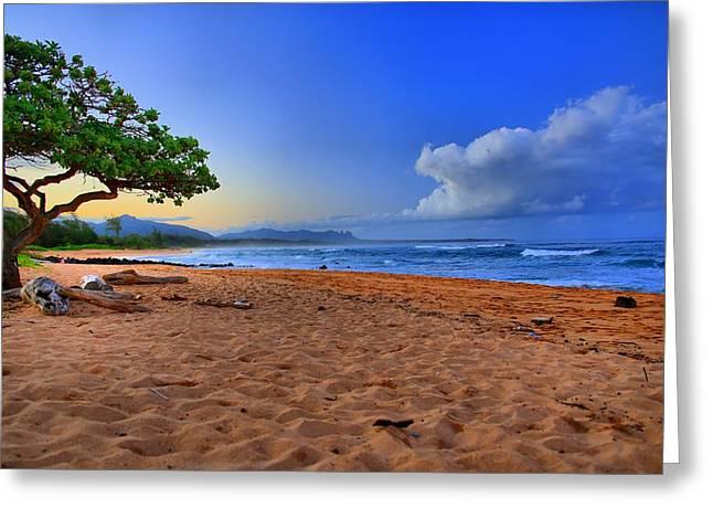 Nukolii Beach Greeting Card by DJ Florek