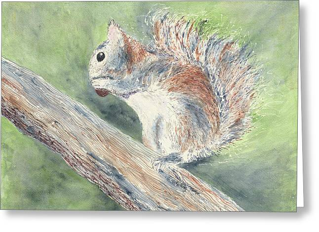 Nut Job Greeting Card