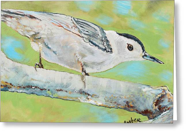 Nuthatch #1 Greeting Card by Amber Foote