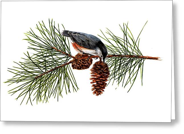 Nuthatch 1 Greeting Card