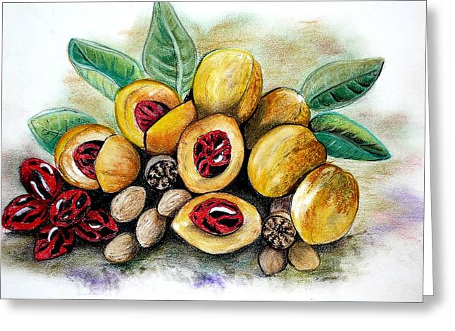 Food And Beverage Pastels Greeting Cards - NUTMEG   fruit to  spice  Greeting Card by Karin Kelshall- Best