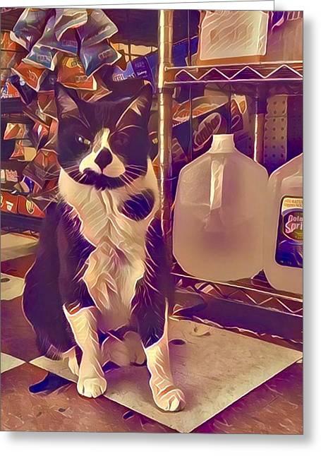 Nyc Bodega Cat Greeting Card