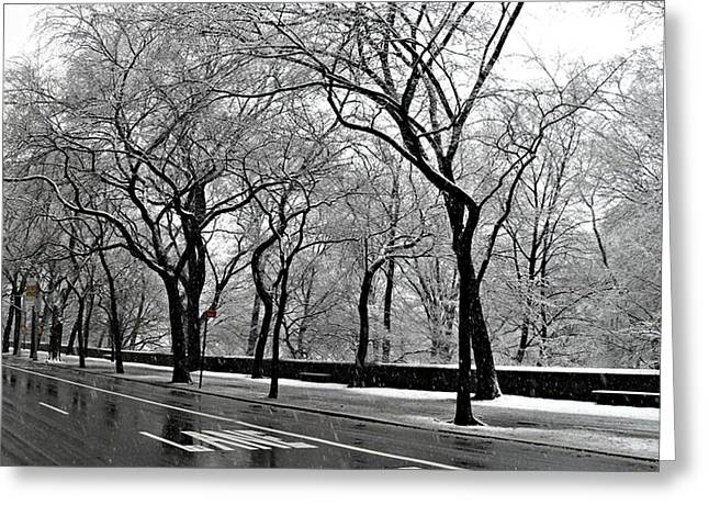 Nyc Winter Wonderland Greeting Card by Vannetta Ferguson
