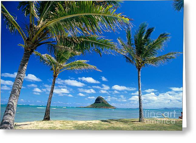 Oahu, Mokolii Island Greeting Card by Peter French - Printscapes