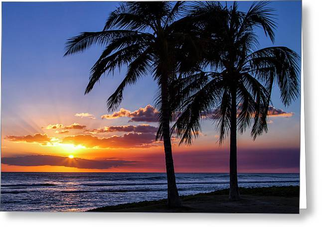 Oahu Palms Greeting Card by Chris Austin