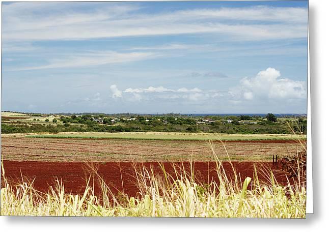 Oahu, Wailua Greeting Card by Vince Cavataio - Printscapes