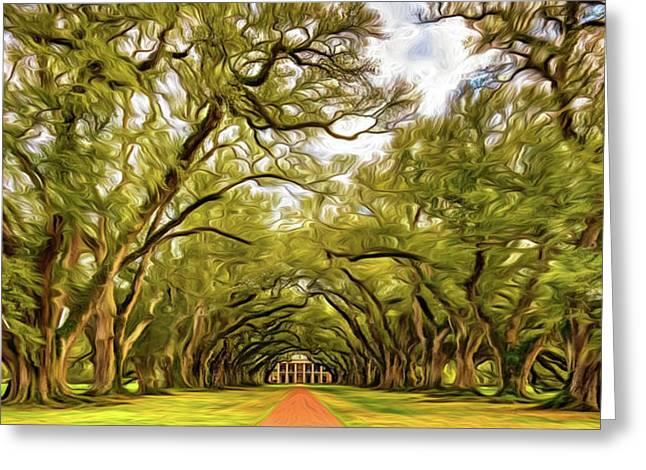 Oak Alley 6 - Paint Greeting Card by Steve Harrington