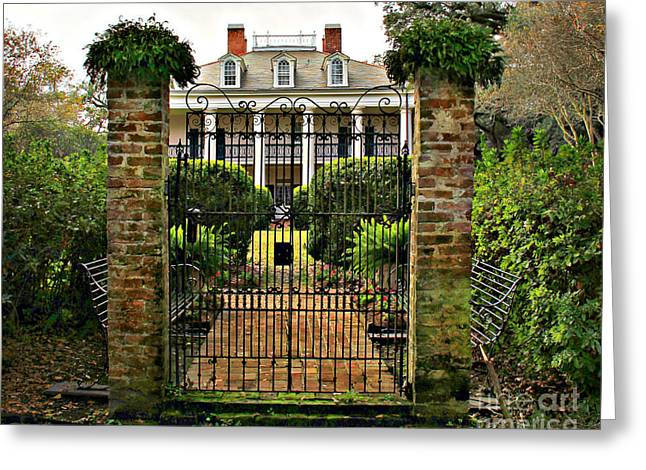 Oak Alley Gate Greeting Card by Perry Webster