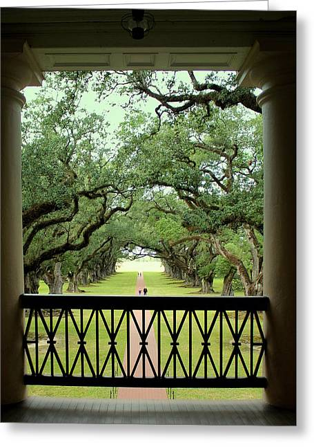 Oak Alley Plantation 2nd Floor View Greeting Card by Anita Hiltz