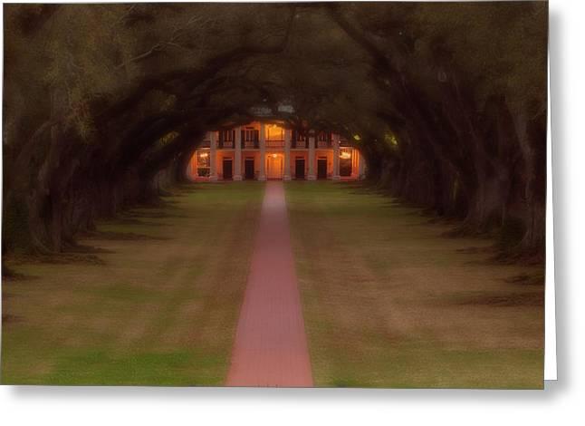Oak Alley Plantation Greeting Card by Jonas Wingfield