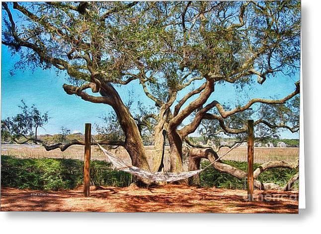 Oak And Hammock Greeting Card by Deborah Benoit