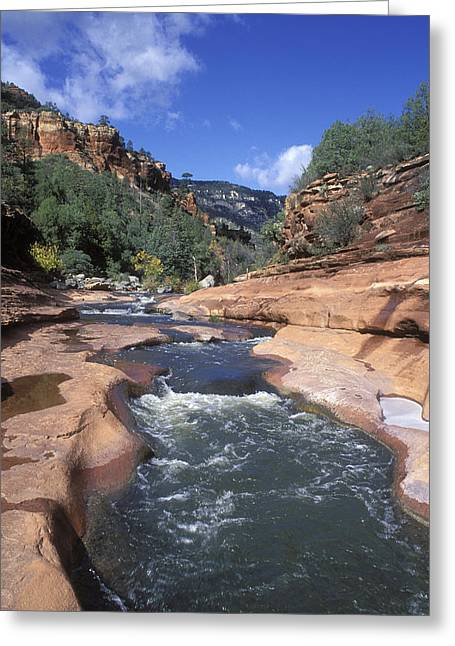 Oak Creek Flowing Through The Red Rocks Greeting Card by Rich Reid