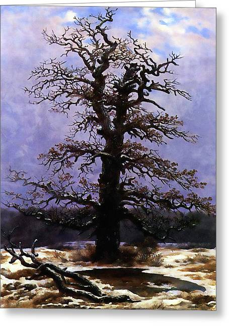 Oak In The Snow Greeting Card by Media Impasto Paper