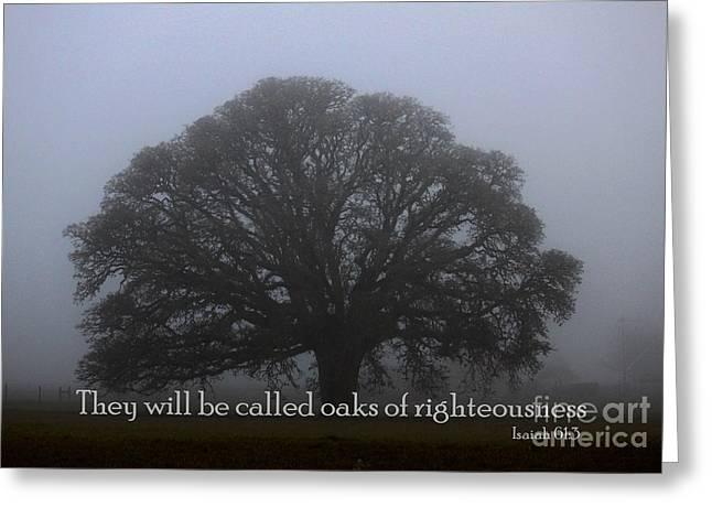Oak Of Righteousness Greeting Card