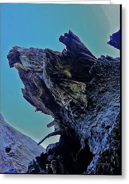 Oak Stump Greeting Card