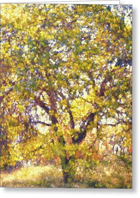 Oaks 29 Greeting Card by Pamela Cooper