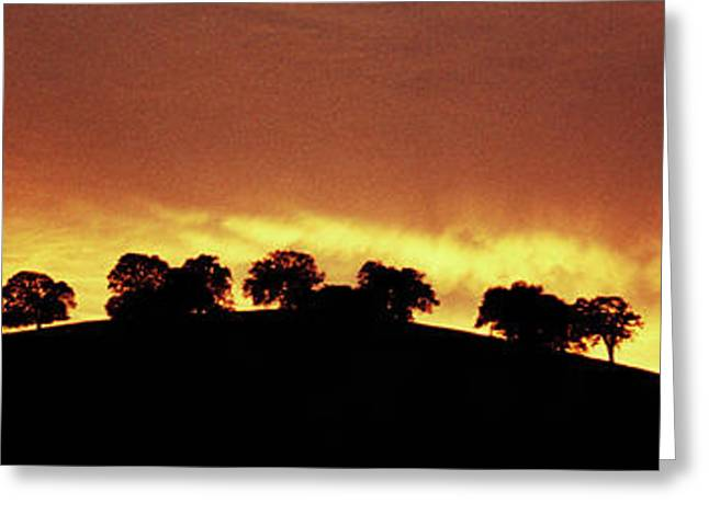 Greeting Card featuring the photograph Oaks On Hill At Sunset by Jim and Emily Bush