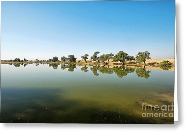 Greeting Card featuring the photograph Oasis by Yew Kwang