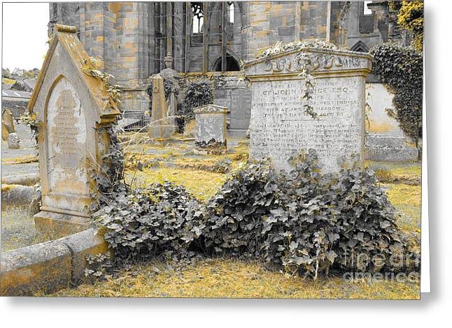 Oblivion. Ivy And Golden Lichen Greeting Card