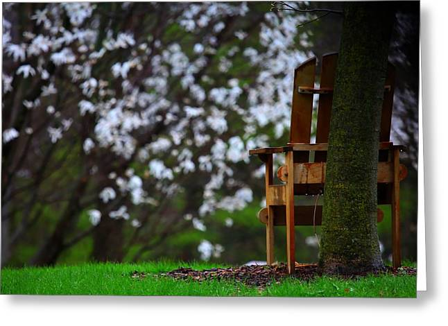 Observation Chair Greeting Card by David Christiansen