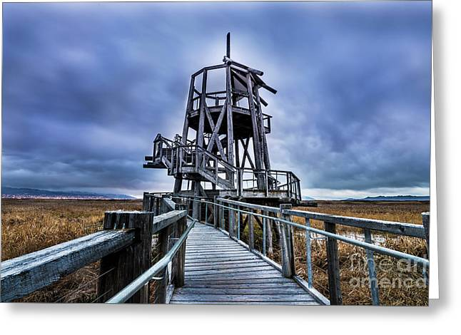 Observation Tower - Great Salt Lake Shorelands Preserve Greeting Card by Gary Whitton