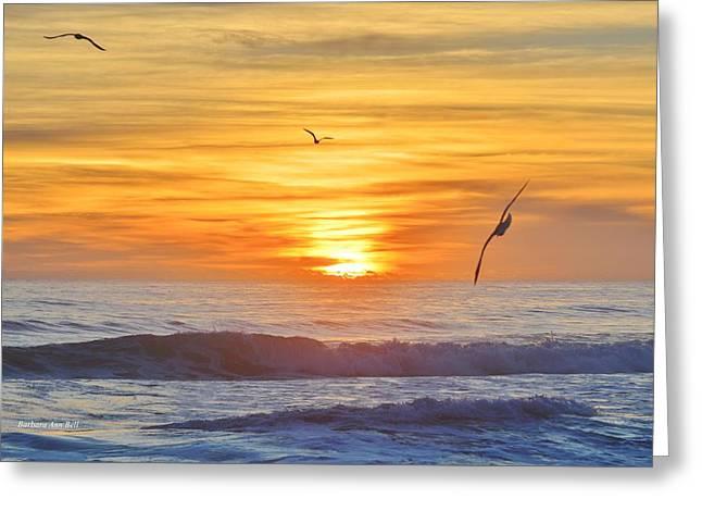 Coquina Beach Greeting Card