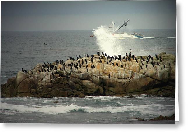 Ocean Angel II Splashed And Birds Greeting Card by Joyce Dickens