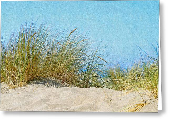Ocean Beach Dunes Greeting Card