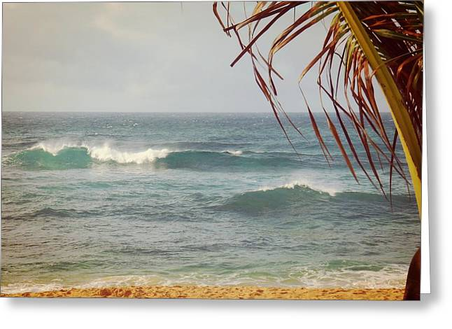 Ocean Breeze  Greeting Card by JAMART Photography