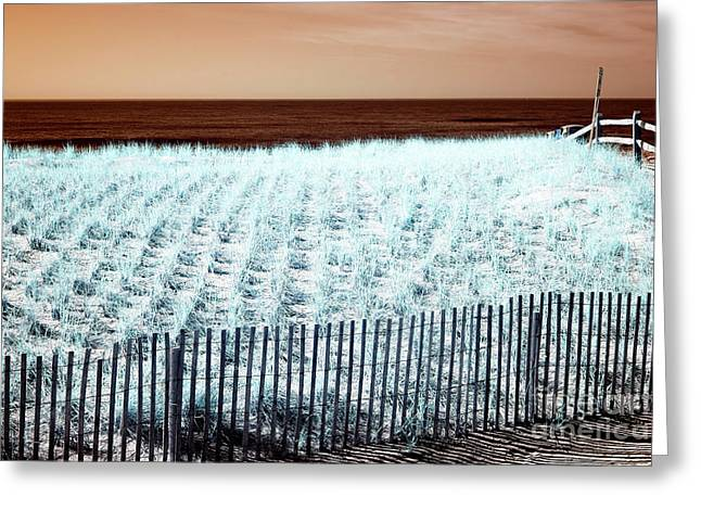 Ocean City Infrared Dune Greeting Card by John Rizzuto