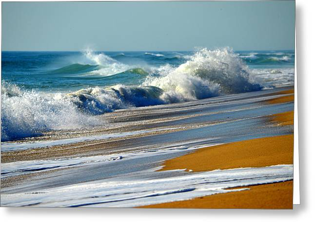 Ocean Delight Greeting Card by Dianne Cowen