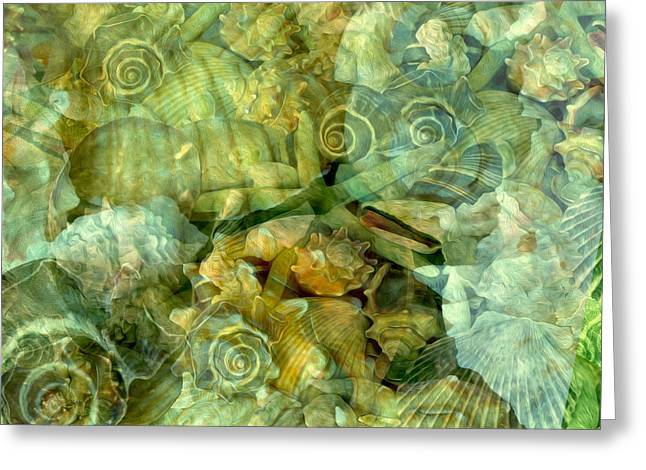 Ocean Gems Underwater Greeting Card
