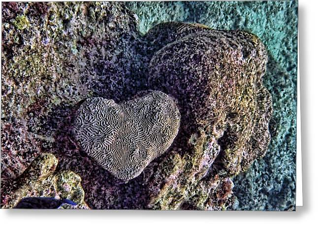 Ocean Love Greeting Card by Peggy Hughes