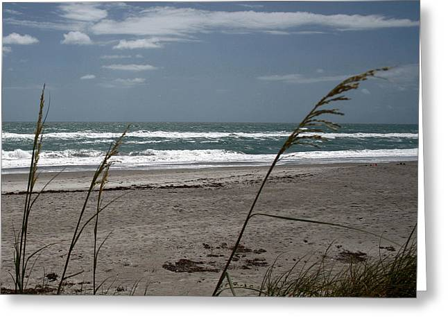 Greeting Card featuring the photograph Ocean Morning by Lou Belcher