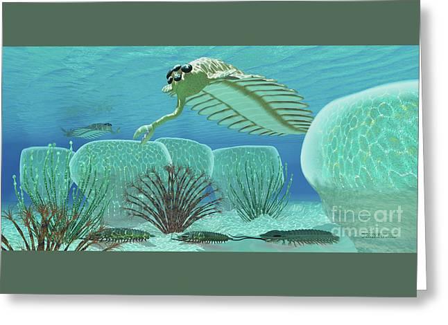 Ocean Opabinia Greeting Card by Corey Ford