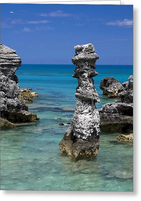 Ocean Rock Formations Greeting Card by Sally Weigand