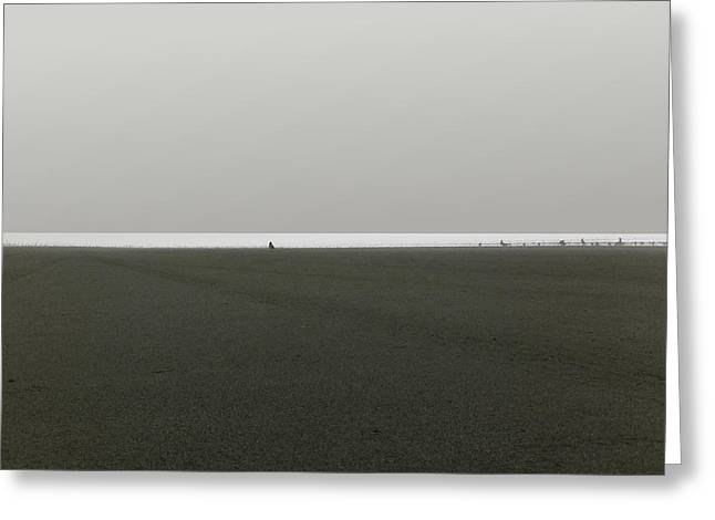 Ocean Shores Greeting Card by Marcello Cicchini