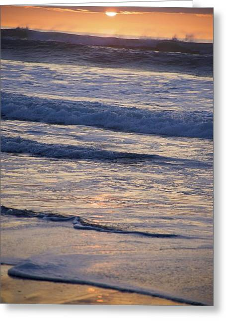 Ocean Sunset Greeting Card by Joyce Sherwin